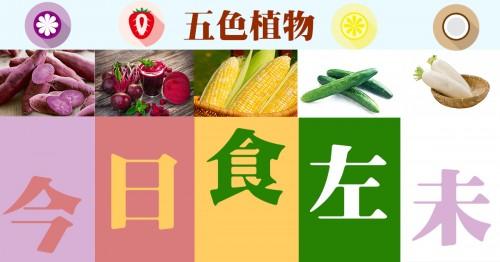 五色蔬果一齊食 食出健康養生法